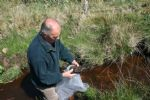 Mervyn Finlay checks for fly life in the stream