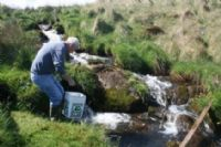 Eugene McCormick releases fry into mountain stream of Blackwater