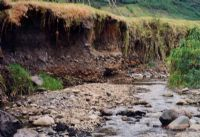 Farmers will get paid to stop river bank erosion like this along their land.
