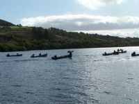 Lough fern at an open competition 2012